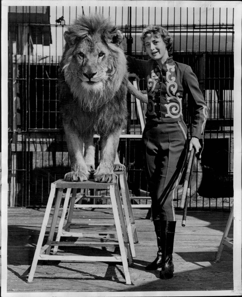 """The Circus """"NO SPIN ZONE"""": Ghost Zoo--Crandon Park, North Miami, Fla."""